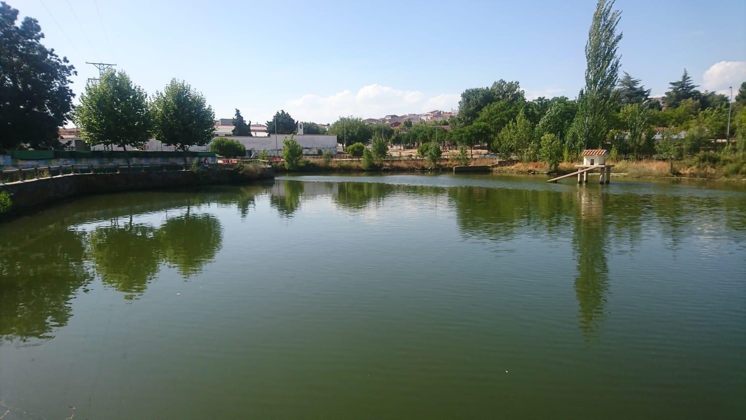 Refuerzo de muro de laguna el Egido en Malpartida de Plasencia (Cáceres)